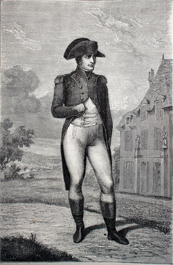 napoleon at home